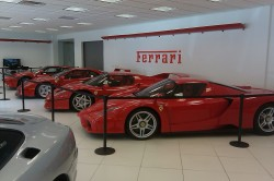 Steve Harris Imports - Ferrari Supercars